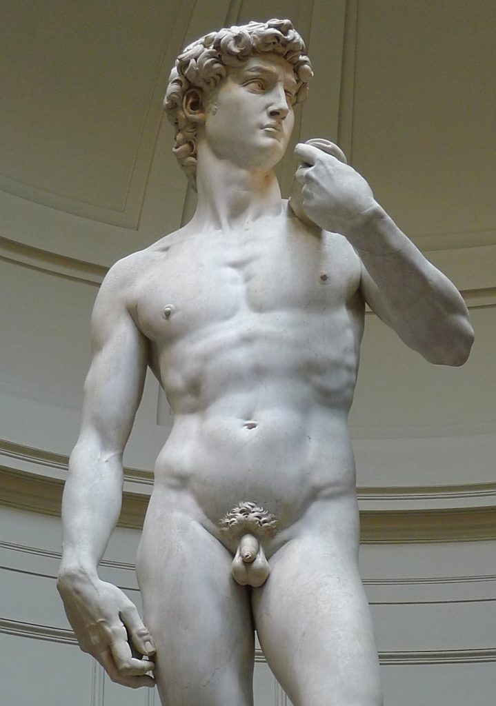 'David'_by_Michelangelo_JBU01